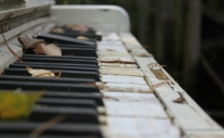music piano forest instruments 1440x900 wallpaper_www.wallpaperno.com_50